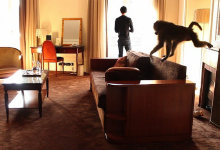"The video ""Untitled Dialogue"" present a recorded meeting between a man and a monkey in a palace hotel room for the exhibition ""signe singe"" in Buisson Farm."